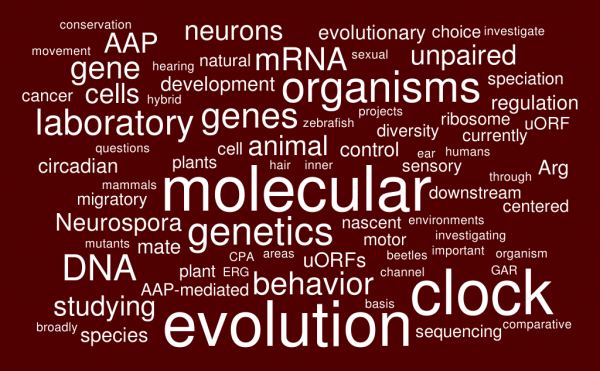 word map of biology interests